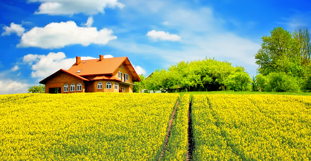 USDA Rural Mortgage Loans |  Thompson Kane and Company