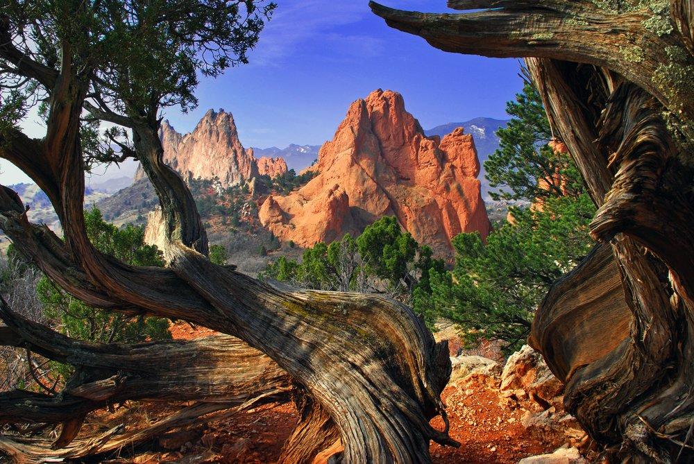 Colorado springs real estate co